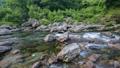土居川の流れ 32543302
