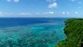 海 珊瑚礁 沖縄の動画 32563889
