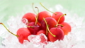 Japanese Cherries on Crushed Ice 32592048