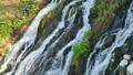 滝 瀑布 白ひげの滝の動画 32623279