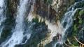 滝 瀑布 白ひげの滝の動画 32623280