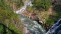 川 景色 白ひげの滝の動画 32623281