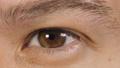 目 眼 眉毛の動画 32718771