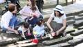 ママ友 公園 主婦の動画 32856922