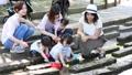 ママ友 公園 主婦の動画 32856923