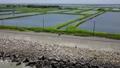 4K 空拍 台湾 台南 国圣灯塔 七股大沙漠 单车跟拍 Tainan Aerial 32951931