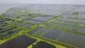 4K 空拍 台湾 台南 国圣灯塔 七股大沙漠 单车跟拍 Tainan Aerial 32951934