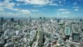 東京 都会 ビジネス街の動画 33076554