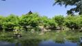 5月 ツツジの東寺 -京都の世界遺産- 33089742