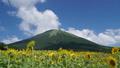 大山 風景 山の動画 33108651