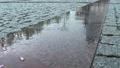 Wet reflective pavement in rain 33273212