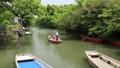 5月 緑の柳川川下り 33321520