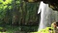 5月 緑の阿弥陀ヶ滝 33321531