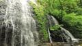 5月 緑の龍双ヶ滝 -日本の滝百選- 33382424