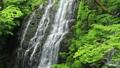 5月 緑の龍双ヶ滝 -日本の滝百選- 33382425