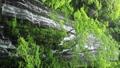 5月 緑の龍双ヶ滝 -日本の滝百選- 33382427