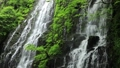 5月 緑の龍双ヶ滝 -日本の滝百選- 33382428