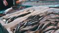 ปลา,อาหาร,อาหารทะเล 33406378