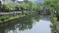 5月 小雨の倉敷美観地区 33471813