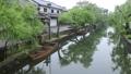 5月 小雨の倉敷美観地区 33471814