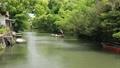 5月 緑の柳川川下り 33471820