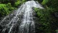 5月 緑の龍双ヶ滝 -日本の滝百選- 33471891