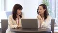 a meeting, computer, laptop 33533758