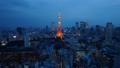 東京タワー ネオン 東京の動画 33621225