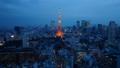 東京タワー ネオン 東京の動画 33621226