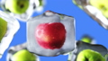 Apples rotate in ice cubes. Food and broadcast 33668935