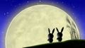 moon, watching, bunny 33777788