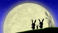 moon, watching, bunny 33777790