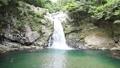清納の滝(3) 33829924