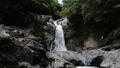 清納の滝(4) 33829926
