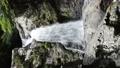 清納の滝(5) 33829928