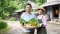 农业中间夫妇菜农夫图象 33891856