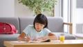 子供 勉強 宿題の動画 33911417
