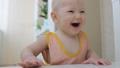 เด็ก,ทารก,เด็กทารก 34030531