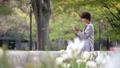 キャリアウーマン 女性 スマートフォンの動画 34208454