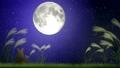 お月見2 34219933