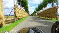 稲掛けの終わったはさ木の並木道をサイドカーで走行した動画 34401896