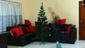 Christmas, Tree, decoration 34526134