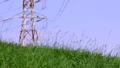 电塔,高压电电塔,草地,电気タワー、高电圧电気タワー、草、Electric tower 34552355
