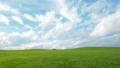 丘の風景(ティルトアップのちフィックス) 34710660