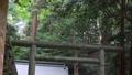 神社の境内 34726748