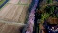 空撮 見沼田んぼの日本一の桜回廊 34731022