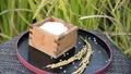 paddy, rice, polished 34759533