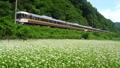 ワイドビューしなの ワイドビュー 鉄道の動画 34791567