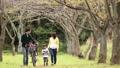 公園 人物 ファミリーの動画 34876192