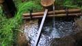 日本庭園の蹲 34943467